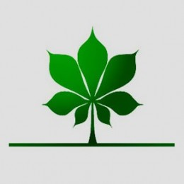 logo_liść