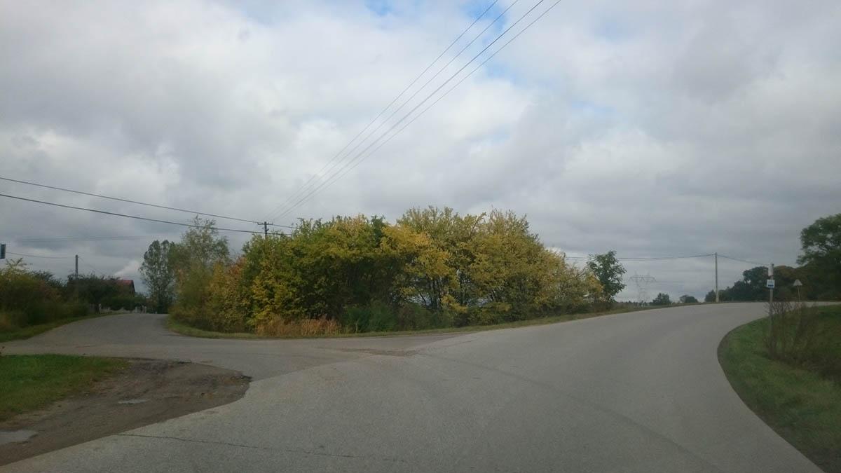 rzgowska-2016